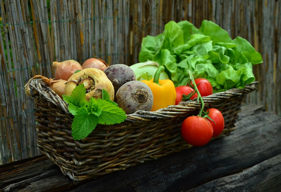 vegetables-752153_960_720 The Best Foods For High Protein And Low Carb Diets